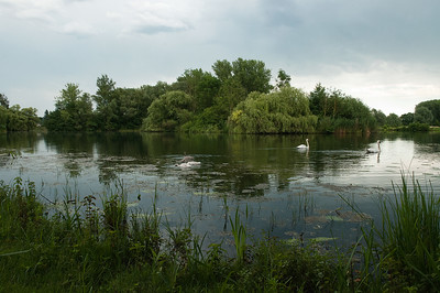 Großer Wülfler u. | Detmarscher Teich