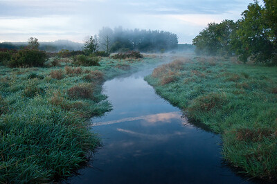5am Marsh