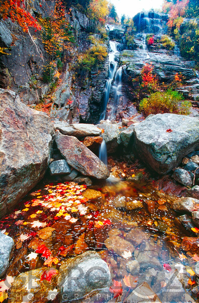 Low Angle View of a  Waterfall with Colorful Fall Leaves, Silver Cascade, White Mountain National Forest, New Hampshire