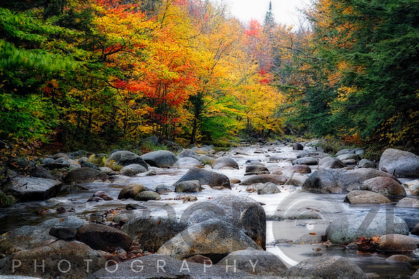 New England Fine Art Images