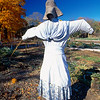Colonial Era Scarecrow in a Garden, Jockey Hollow State Park, New Jersey