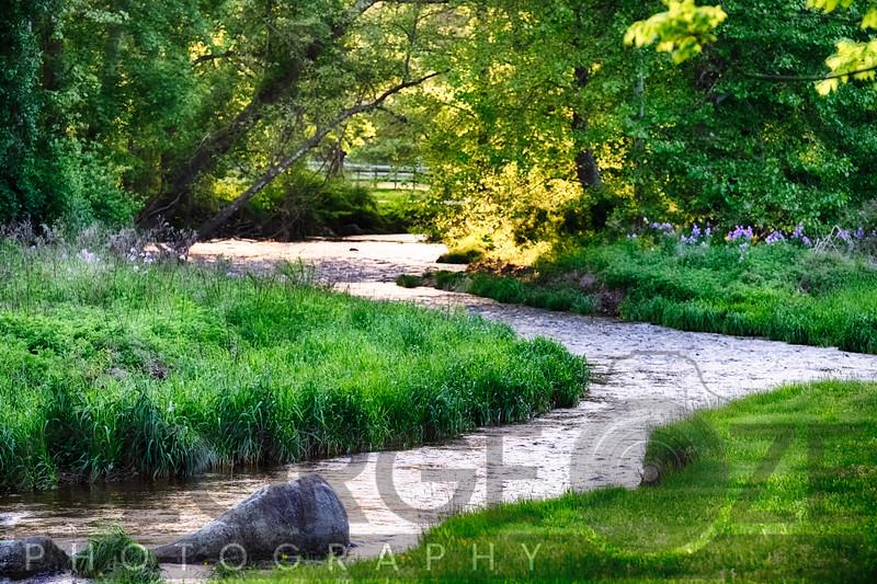 Spring Scenic with the Rockaway Creek, Oldwick, Hunterdon County, New Jersey