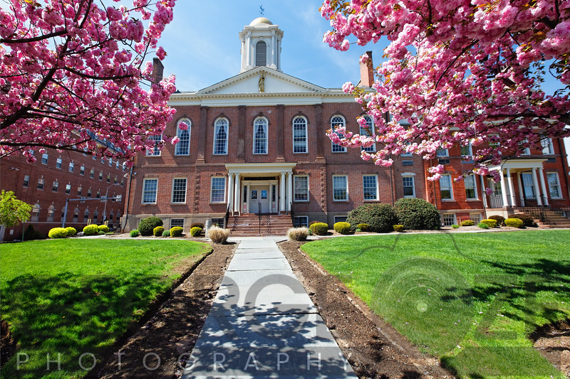 Frontal View of the Morris County Courthouse During Spring Bloom, New Jersey