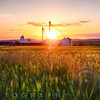Farm with Grain Silos, Hunterdon County, New Jersey