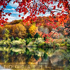 Colorful Trees  Reflections in a Lake, Round Valley Reservoir, Hunterdon County, New Jersey