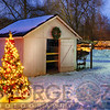 Shed with a Lit Christmas Tree, Clinton, New Jersey