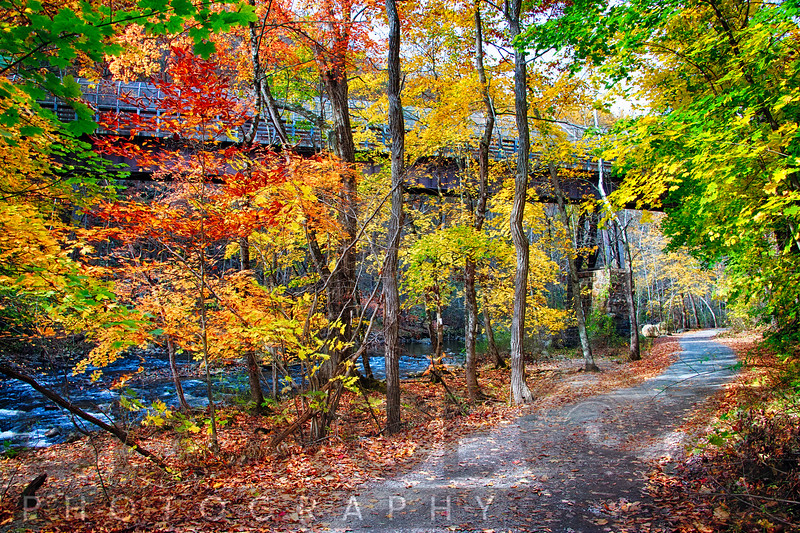 Path Along The River with Fall Foliage