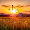 Farm with Grain Silos at Sunset, Hunterdon County, New Jersey