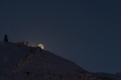 Moonrise, Sun Valley, Idaho, December 12, 2016