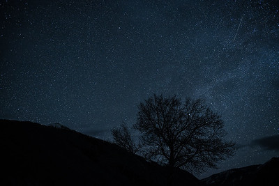 Lyrid Meteor Shower, #2,  Sun Valley, Idaho