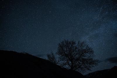 Lyrid Meteor Shower, #2,  Sun Valley, Idaho