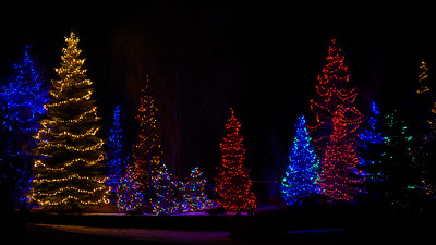 Christmas Lights, Sun Valley, Idaho