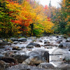 View of a Rocky Creek During Fall, Lost River, White Mountains, New Hampshire