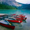 Canoes  at a Dock, Emerald Lake, British Columbia, Canada