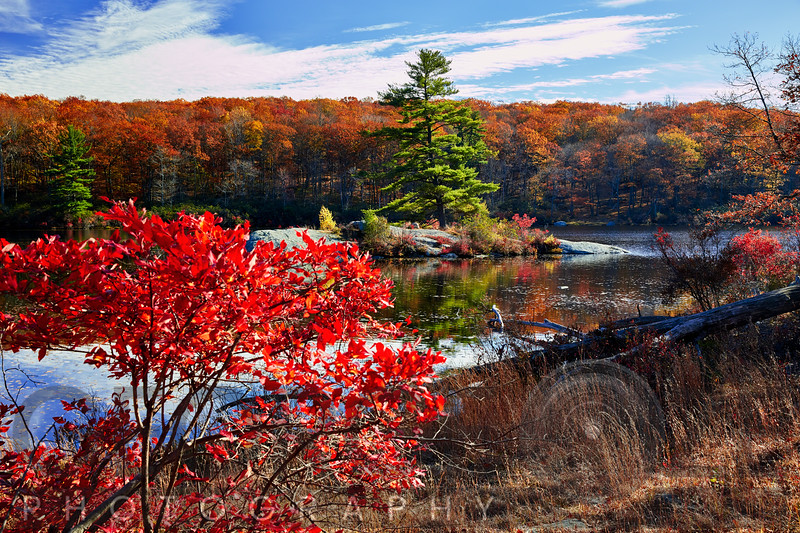 Little Island Surrounded with Fall Colors, New York State