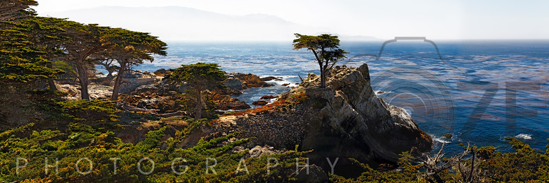 Panoramic View of the Pacific Coastline at Pebble Beach