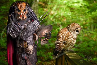 2 Predators