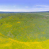 Flat Ranch Preserve, The Nature Conservancy