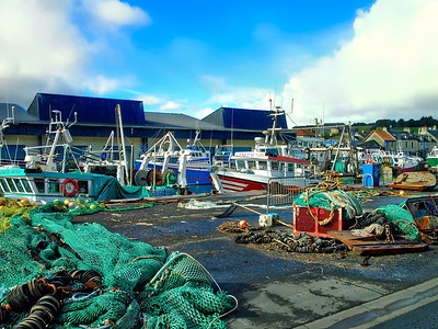 Normandy Fishing Port