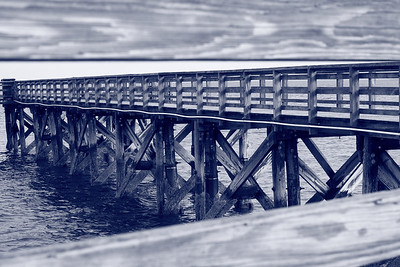 Wooden Pier Calf Pasture