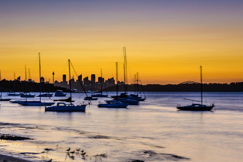 Sydney Skyline from Watson's Bay