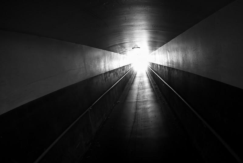 Enter the Light Train