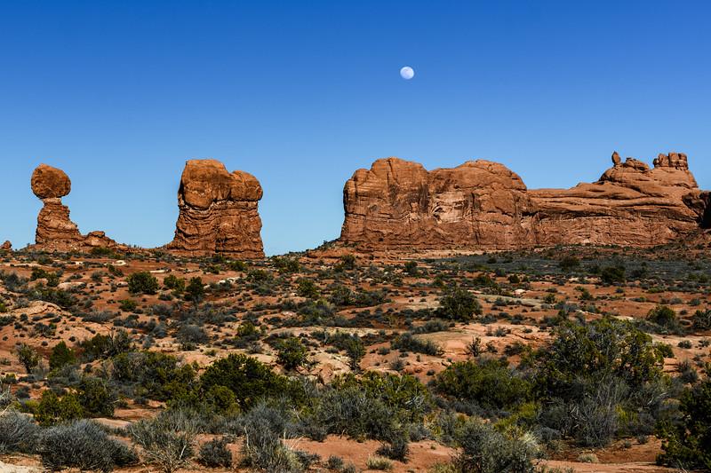 Desert Moonrise