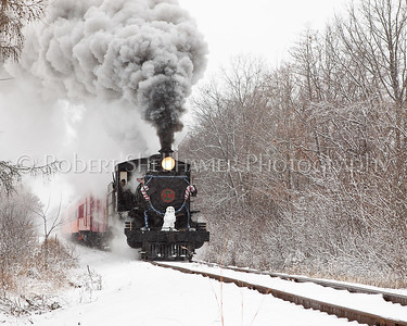 Little River RR #110 Holiday Express