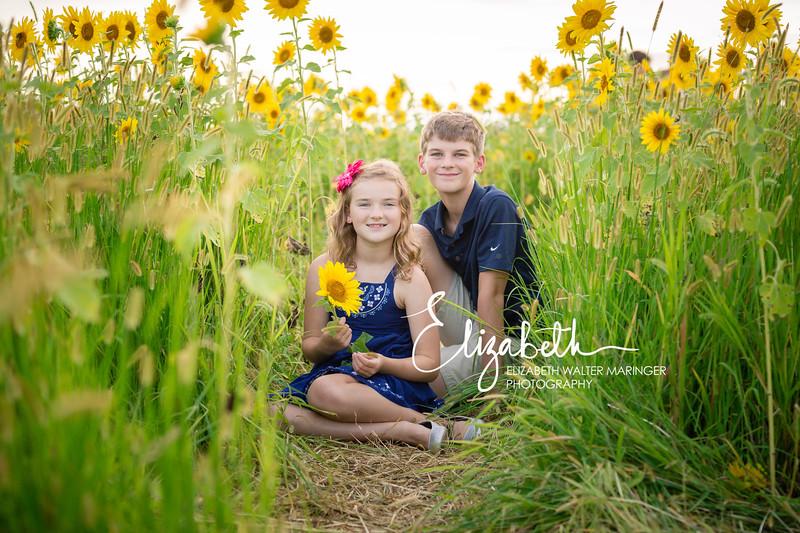 Sunflowers_20200822_2033