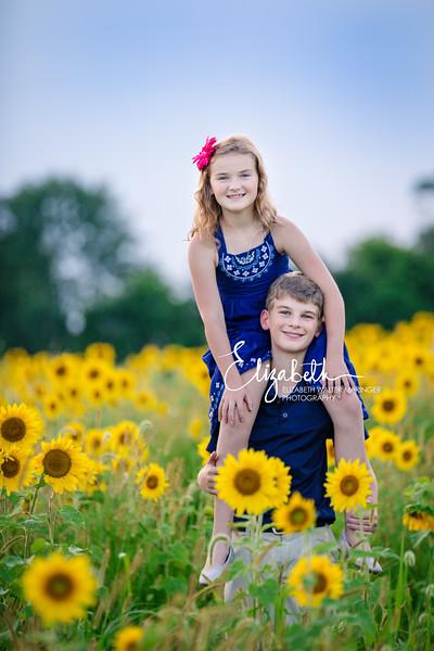 Sunflowers_20200822_2085