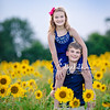 Sunflowers_20200822_2085