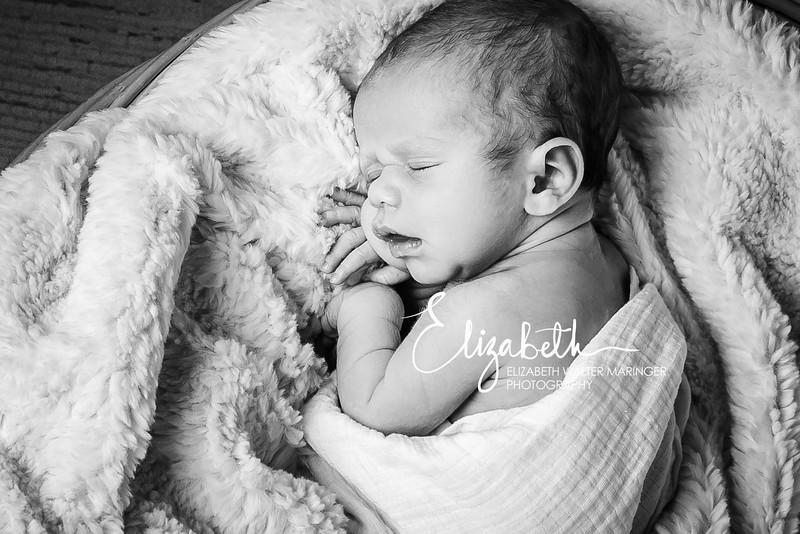Kelly_Newborn_150314_1017