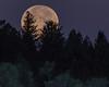 Moonset of Idaho Mountains