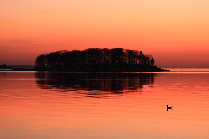 Sprite Island Dawn