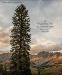 Sun Valley Magazine - Fall 2020 - 2021