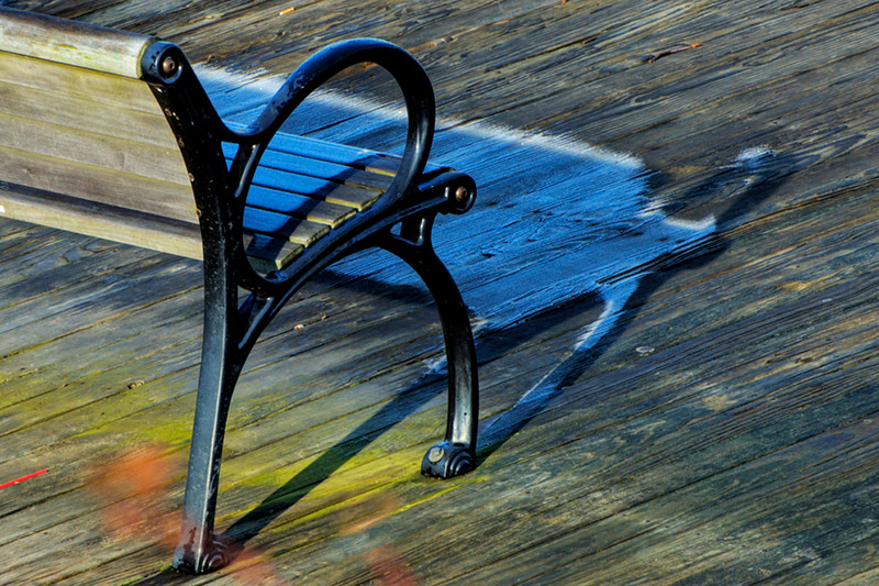 Shadows of bench protect early morning frost at Riverside Gardens Park in Red Bank, New Jersey
