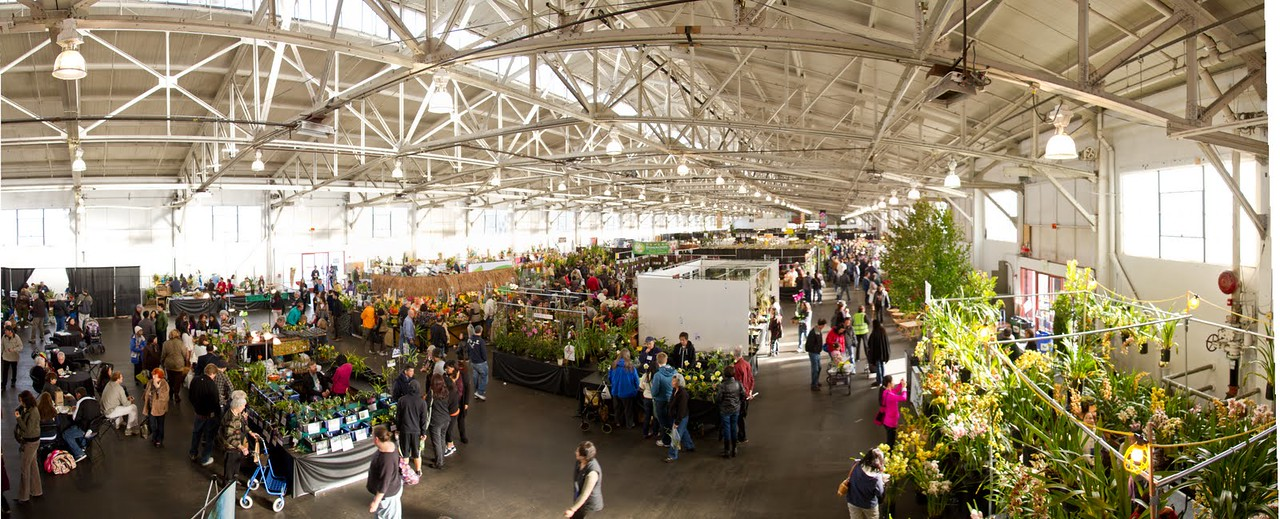 SF_Orchid_Show_Pano-01.jpg