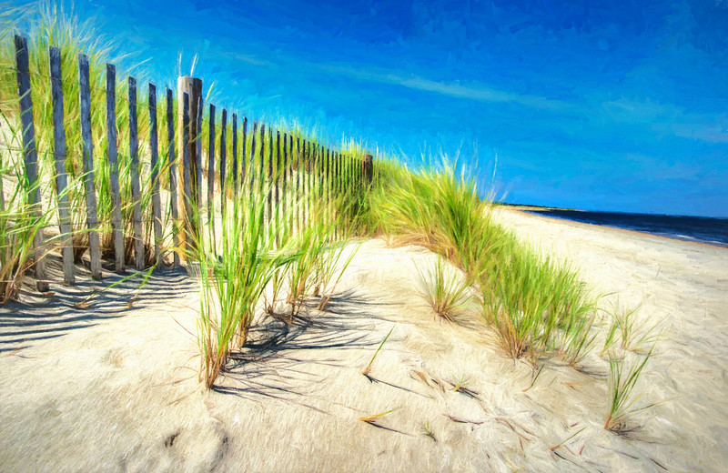 Painterly  Waterfront Dune Grass