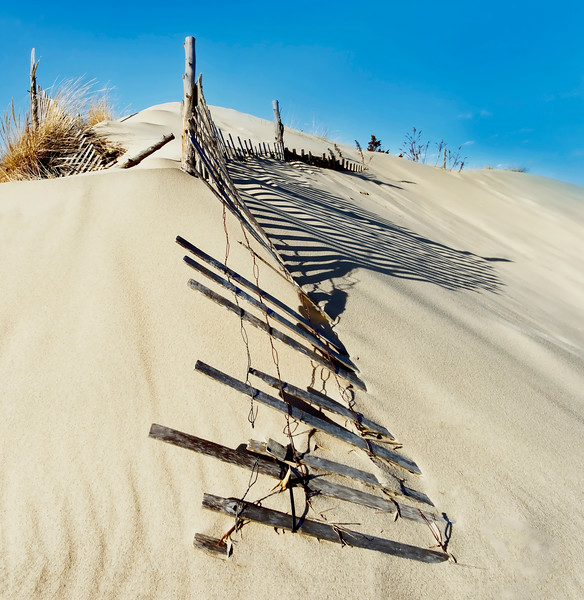 Sand Dune Fences And Shadows