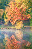Autumn And Reflection At The Lake