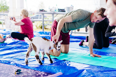 190309_srr-goat-yoga-23