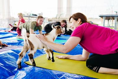 190309_srr-goat-yoga-14