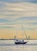Sailboat In Pastel Harbor Sunset
