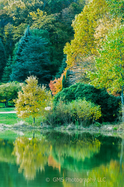 Autumn colors abound along the edge of a pond at Veterans park in Hazlet New Jersey.  Digitally painted photograph.