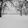 Snow Day at Washington Park