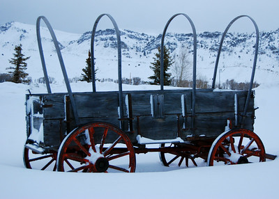 Winter Wagon