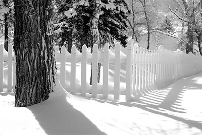 Picket Fence Shadows on the Snow