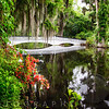 Little White Wooden Footbridge in a Lake, Magnolia Plantation, Charleston, South Carolina, USA
