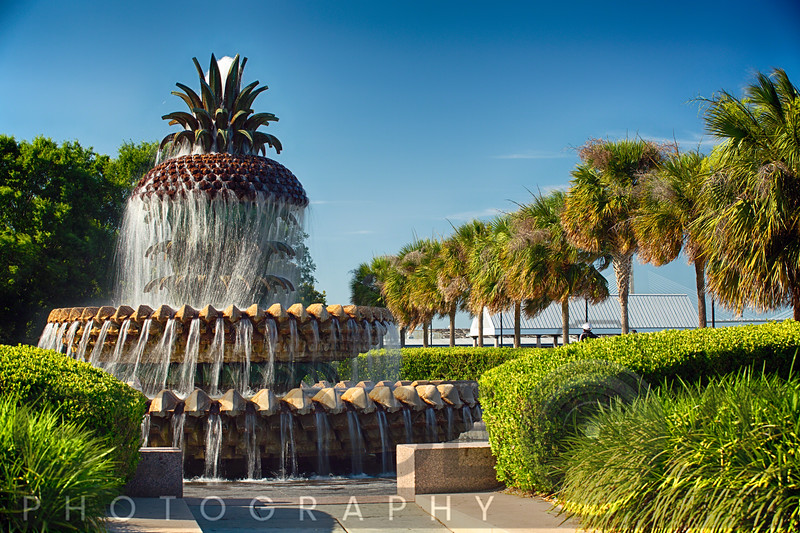 Low Angle View of a Pineappl;e Shaped Fountain, Waterfront Park, Charleston, South Carolina