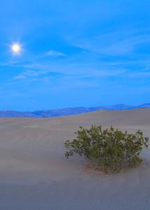 Moon over Dune